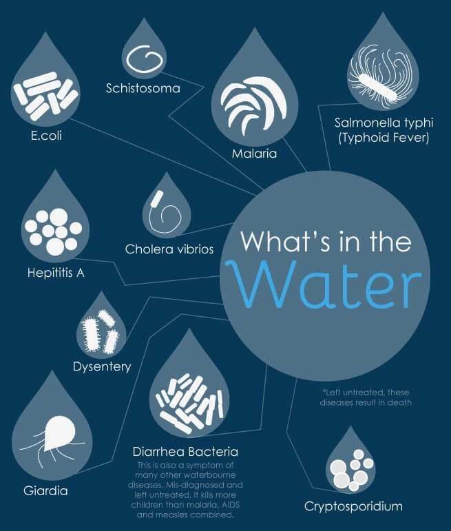 What's in the Water Infographic